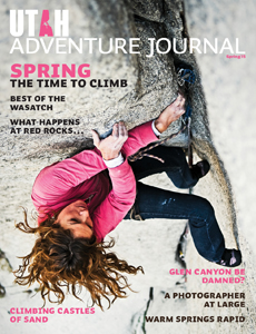 Spring Issue on Stands Now!